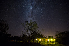 Starry sky. (Pablin79) Tags: trees sky nature night lights stars colors dark shadows longexposure outdoors milkyway argentina astrophotography silhouettes starry misiones astros dosdemayo