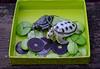 Oh Those Wily Turtles! (BKHagar *Kim*) Tags: bkhagar turtle turtles green lime treasure gift friend