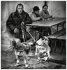 2017-11-26 Fécamp-007-20170917 (Daniel Briot) Tags: fécamp chien buvette