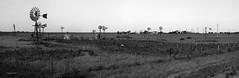 Pengong Windmills (SawardPhotography) Tags: australia windmill penong outback