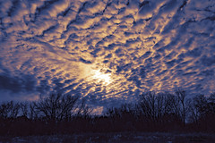 frosty sky ... (mariola aga) Tags: autumn winter forest trees sky clouds sunset landscape wideangle thegalaxy