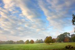 Wide Misty autumn morning at University of Kent (Jim_Higham) Tags: universityofkent he excellent beautiful campus higher education top trees canterbury kent england uk europe european britian british english city