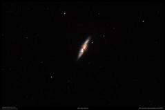 M82 Cigar Galaxy (Myrialejean) Tags: m82 cigar nebula sky night astronomy astrophotography space deepsky dark stars pixinsight celestron cgem astrometrydotnet:id=nova2355202 astrometrydotnet:status=solved