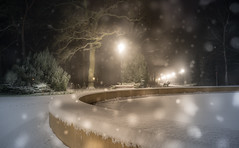 Nighly Wonderlands (--Conrad-N--) Tags: winter park sony shadow silhouettes snow ice brunnen frozen forest frost cold flakes a7rm2 za fürstenwalde