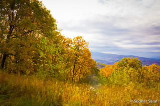 Autumn day at Shenandoah National Park, Virginia (USA) - Nov 2017