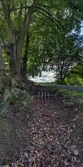 _Photos_-_2014_-_Part_2_IMG_1558 Panorama (RenaudWarnotte) Tags: burtonville paysage hdr panorama neuvillehaut ruisseau