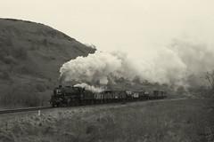 Northdale goods (feroequineologist) Tags: 44806 black5 lms nymr northyorkshiremoorsrailway railway train steam