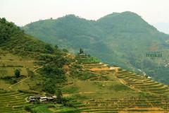 hagiang villages