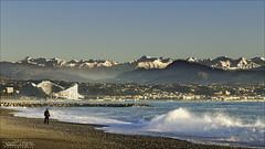 """Voilà pourquoi on appelle ce département """"Alpes Maritimes"""". (Dany-de-Nice) Tags:"""