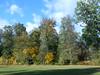 DSCN3277 (R58c) Tags: podzim autumn colors nature příroda krajina scenery landscape cechy bohemia czech republic cesko ceska republika