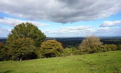 View from Rackham Hill 1 (Leimenide) Tags: south downs way downland rackham hill nature landscape england west sussex autumn hills view