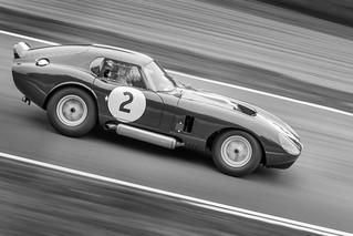 Shelby Daytona Cobra 1965