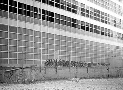 String of Bicycles (Demmer S) Tags: lines street bicycles windows bikes fence outside bicycle outdoors bike window streetphotography shootthestreet streetshots documentary urban city bw monochrome blackwhite blackandwhite blackwhitephotos blackwhitephoto building peopleless peoplelessness chicago il illinois windycity downtown loop chicagoland chicagoist chicagoistphotos