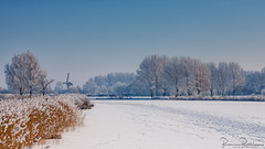 Winter weather expected this weekend (BraCom (Bram)) Tags: 169 bracom bramvanbroekhoven holland kinderdijk nederland netherlands southholland windmolen zuidholland barn bomen cold hoarfrost ice ijs koud reed riet rijp ripe schuurtje sky sneeuw snow trees widescreen windmill winter