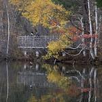 Haiku d'automne thumbnail