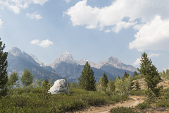 """Views of the Tetons from Taggart Lake Trail • <a style=""""font-size:0.8em;"""" href=""""http://www.flickr.com/photos/63501323@N07/38255643816/"""" target=""""_blank"""">View on Flickr</a>"""
