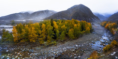 Autumn (Massetti Fabrizio) Tags: autumn altay autunno snow landscape landscapes light xinjiang rural river red fog schneider yellow green giallo gold
