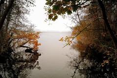 Misty Autumn Morning (frata60) Tags: nikon d300s tokina 1224mm netherlands nederland landscape landschap mist haze autumn herfst water paterswolde vennebroek friescheveen trees reflection weerspiegeling dren drenthe colors herfstrood kleur kleuren hdr highdynamicrange