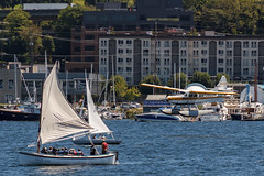 """Cleared to land."" (famasonjr) Tags: seattle washington lakeunion aircraft landing sailboats sailing watercraft landscape city scape lake seaplane boat canon eos 7d canonef28135mmf3556isusm"