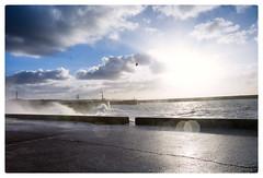 Scheveningen Harbour Head (Paulemans) Tags: paulemans paulderoode variosonnar247028za variosonnart282470 sony282470zassm beach scheveningen sea sony 282470 za ssm