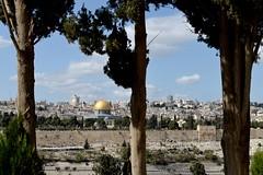 DSC_2894 (Andrea Casarino) Tags: terrasanta israele gerusalemme betlemme nazareth padrifrancescani sanfrancesco muro religione