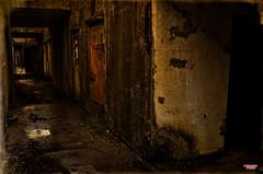 Battery Murphy (MBates Foto) Tags: abandoned aged ambientlight availablelight batterymurphy color daylight daytime derelict deserted fortcolumbia historic military neglected nikkorlense nikon nikond7000 olympicpeninsula outdoors parksandrecreation rain rainyday statepark urban washington wet chinook unitedstates 98614