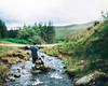 David Panorama 1 (Adam Pietraszewski) Tags: panorama brenizer bokeh bokehlicious bokehrama portrait portraiture photography adam pietraszewski