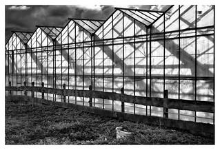 Greenhouse geometry