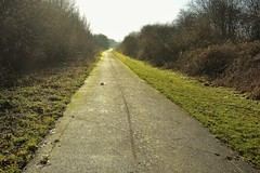29726 (benbobjr) Tags: birmingham westmidlands midlands england english uk unitedkingdom gb greatbritain british britain birminghamuk walsall southstaffordshirerailwayline southstaffordshiretrainline southstaffordshireline path pathway footpath bridle way publicfootpath oxfordworcesterandwolverhamptonrailway ruins rust abandoned beeching beechingaxe southstaffordshirerailway rushall londonandnorthwesternrailway owwr greatwesternrailway