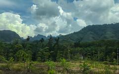 08.11-Khao-Lak-Thailand-iphone-3044