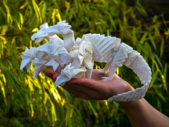 Hydra (bodorigami) Tags: hydra origami complex crazy paper 100 cm 1 m 64 128 grid boxpleat mythology papier bodo bodorigami paperfolding art
