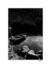 """Dernières lueurs avant la nuit • <a style=""""font-size:0.8em;"""" href=""""http://www.flickr.com/photos/145728634@N07/38465459981/"""" target=""""_blank"""">View on Flickr</a>"""