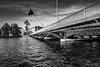 Genève Pont du Mont Blanc (Didier Mouchet) Tags: pontdumontblanc genève genf suisse switzerland geneva rhône helvétie helvétique eau fleuve pont monument didiermouchet d5300 nikond5300 nikon noiretblanc blackandwhite bw bianconero monochrome