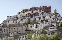 Thiksey Monastery (bag_lady) Tags: thikseymonastery monastery gompa buddhist ladakh leh india buddhism gelugsect maitreyatemple
