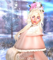 ❄ Oh Oh, It's Magic ❄ (cassiel.static) Tags: winter glitter fur lace secondlife pink collar coat snowflake
