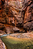The Water Really Is This Green (My Friends & Family.) Tags: zionnationalpark virginriver thenarrows