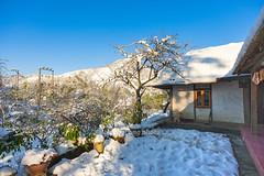 _J5K9916.1213.Ô Qúy Hồ.Bản Khoang.Sapa.Lào Cai. (hoanglongphoto) Tags: asia asian vietnam northvietnam northwestvietnam landscape scenery vietnamlandscape vietnamscenery vietnamscene snow winter winterinsapa snowinsapa sky bluessky home house canon canoneos1dsmarkiii zeissdistagont3518ze tâybắc làocai sapa bảnkhoang ôquýhồ mùađông mùađôngsapa tuyết tuyếtsapa bầutrời bầutrờimàuxanh phongcảnhsapa ngôinhà