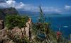 Makapu'u reef blues (OzzRod) Tags: pentax k1 hd pentaxd fa 28105mm f3556 seascape makapuu reefs blue oahu hawaii