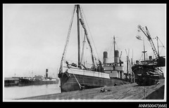 steamer 'Glenreagh' (1919 - 1934) from Aust Nat Maritime Museum (Great Lakes Manning River Shipping NSW) Tags: notes ernestwrightbst glenreaghewsyt ernestwright glenreagh glmrsnsw coastaltrader midnorthcoast australia tuncurry wrightshipst greatlakesnsw nswgreatlakes capehawkeharbour woodenship ernestwrightshipyards coastalsteamer allentaylorco northcoaststeamnavigationcoltd nsw ssglenreagh australiannationalmaritimemuseum
