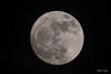 _DSC9747 (dixiedog) Tags: moon mississippi