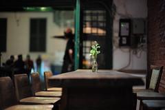 Kedai Seni Djakarte, Indonesia (Plan R) Tags: restaurant cafe kotatua jakarta evening night leica m 240 noctilux 50mm