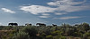 Mustangs.  New Mexico, USA. (cbrozek21) Tags: mustng horse wildhorses newmexico landscape desert sky clouds panorama pentaxart