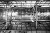 廢青的廢墟探險 (Aston Chen) Tags: 廢墟 ruins nantou monochrome
