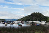 Loch Lomond with a bit of sun! (Scalino) Tags: scotland lochlomond loch balmaha