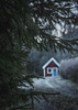 red house frame2 (dovlindphoto) Tags: tree forest nature woods pine redhouse house cabin dof focus wanderlust wandering moody frost cold winter sweden dalsland dovlindphoto dovlind