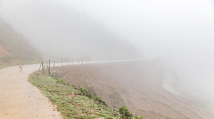 Dog in Fog (E.K.111) Tags: freeanimals landscape fog weather outdoor mountain vietnam sapa