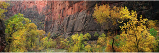 The walls of Sinawava