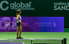 20171025-0I7A1975 (siddharthx) Tags: singapore sg simonahalep carolinegarcia elinasvitolina wtasingapore tennis womenstennis singaporeindoorstadium power grace elegance contest competition 1seed 4seed 6seed 8seed champions rally volley serve powerfulserves focus emotions sports wtatour porscheservesspeed bnpparibas stadium sport people wta winner sign crowd carolinewozniacki portrait actionshots frozenintime