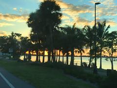 Sarasota Sunset (soniaadammurray - Off) Tags: iphone sunset quartasunset sky clouds trees streetscene road driving sarasota florida usa nature