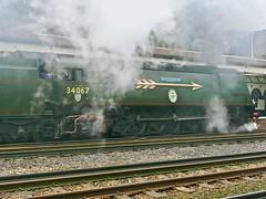 The Arrow (Deepgreen2009) Tags: bulleid pacific spamcan arrow regalia adornment goldenarrow special privatecharter tangmere 34067 steam uksteam weybridge station train surrey